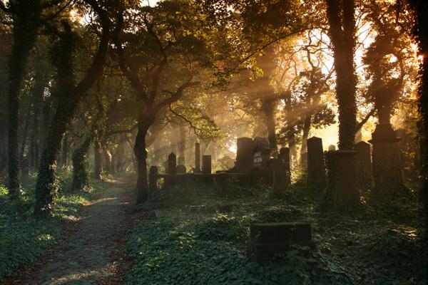 nasze-cmentarze